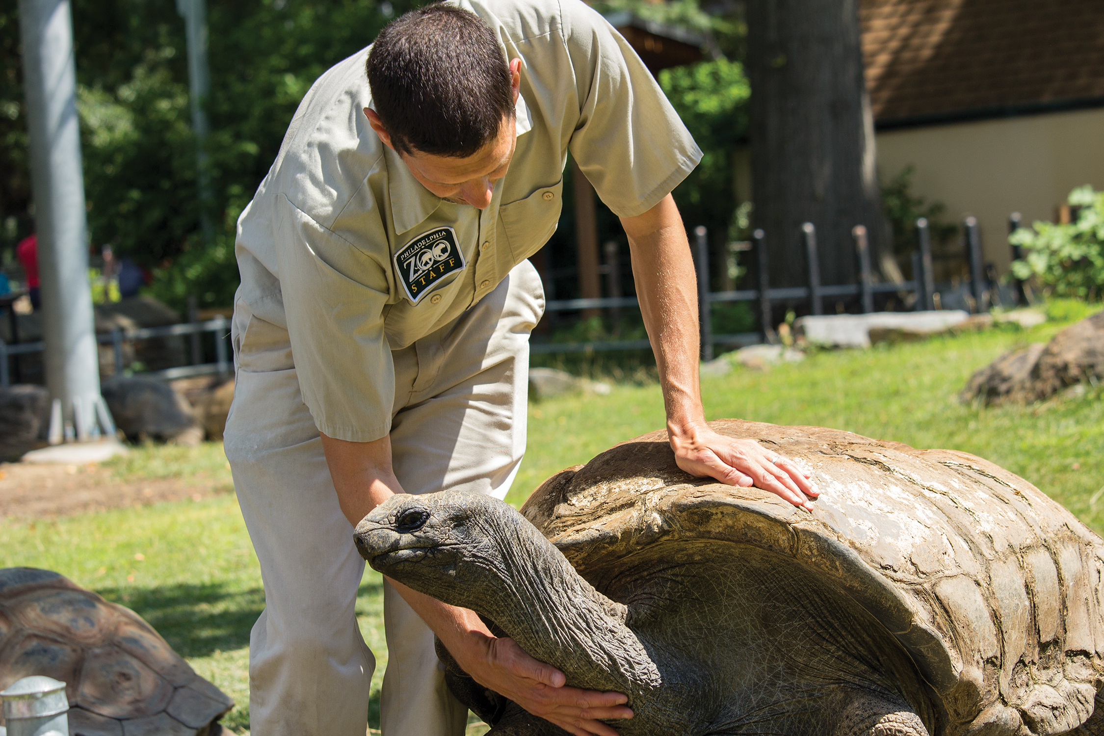 Keeper with Tortoise